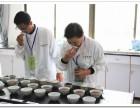茶叶QS认证专用干评台湿评台 茶叶评茶室用干平台湿平台评审台