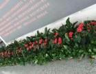 天津总部花卉基地绿植租赁公司