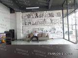 柳州墙绘专业团队 柳州恒美墙绘思诺公司案例
