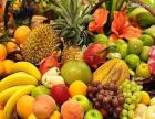 蔬菜水果调料配送 效率第一