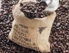 咖啡豆批发厂家
