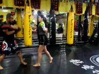 通州成人散打培训班去龍圣搏击俱乐部