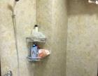 滨江国际 单身公寓 电梯房 整租