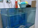 闲置1.5米鱼缸一个