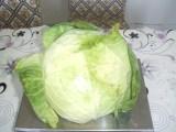 新鲜蔬菜  保鲜包菜  中甘 奥奇 优质大头菜  山东出口级甘蓝