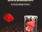 仟湖傲深炫宝血鹦鹉饲料自然增色热带鱼发财鱼红财神增红鱼食鱼粮