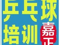 江汉区妙墩路长源大厦附近儿童乒乓球培训,零基础培训班热招中