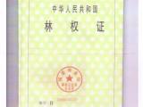 上海国茶行欧标茶园出售欢迎各位选购