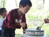 东莞亲子拓展基地松山湖生态园适合孩子游玩的农场