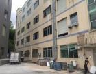 凤岗黄洞工业正规成熟工业园厂房出租三楼1800平方