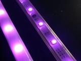 12V5050RGB柔性防水Madrix智能幻彩LED灯带