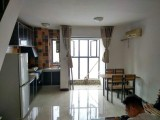 后湖 汉口城市广场 2室 2厅 90平米 整租