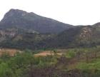 山地林地耕地养殖场转让