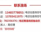 2017年喜明观赏鱼金鱼锦鲤红鲫鱼大量批发出售
