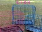 20斤猫砂11元,三层,双层猫笼,猫粮