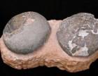 化石个人收购,当天交易古玩古董,