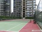 深圳福田南山罗湖龙华 十年专业网球培训