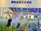 杭州哪里可以学钢管舞