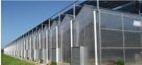 山东蔬菜温室,温室大棚建造厂家
