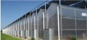 简易温室大棚厂家——山东专业的温室大棚