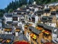 正是梅花怒放时、紫霞山庄、卖花渔村、徽州大峡谷二日