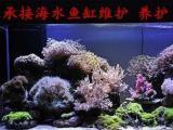北京上门鱼缸清洗 清理鱼缸 鱼缸换水 鱼缸维护治病