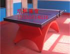 夏县乒乓球球馆大彩虹乒乓球台价格