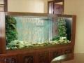 广州哪里有鱼缸清洗公司,广州菜市场海鲜池定做价位