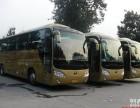 上海福特全顺17坐车队拥有15余辆高顶 班车出租