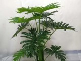 广州仿真植物仿真绿化墙工厂直销与安装