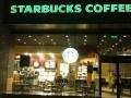 青岛咖啡加盟连锁品牌,星巴克加盟多少钱
