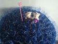 99朵蓝色妖姬玫瑰花束送货上门