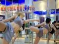 湖州钢管舞舞蹈培训班 钢管舞专业培训