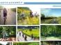 广西南宁好的农家乐度假村 生态农庄较好的景观规划