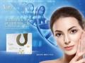 北京东成世纪生物科技有限公司美容抗衰产品项目合作