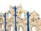 户外 儿童攀登架 攀岩设备 YQL-14103 体育 健身 设施