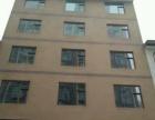 出租中盛国贸对面 三层门面房 600平米