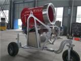 供应河南造雪设备 全自动造雪机 厂家直销