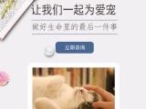 杭州幼年寵物火化殯葬實體店