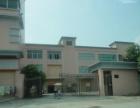 东莞东城全新独院标准厂房3600平米招租