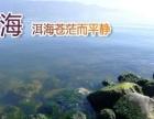 大理丽江香格里拉西双版纳旅游预订 跟团 自由行