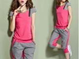 韩国代购时尚夏装新款短袖 欧洲站哈伦裤夏季 女式休闲套装