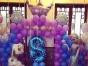 气球布置 周岁满月派对婚房