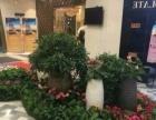 怡君花卉花艺 销售,批发,租摆,绿化工程