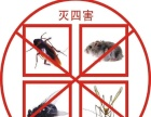 除虫、灭蟑螂、灭鼠