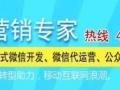 湛江专业网站建设、手机微信公众号设计、百度排名推广