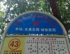 峪泉村二组2号 自建一楼门面房