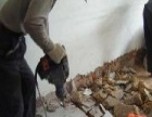 专业砸墙,拆除,塔吊油漆,改水电、工装、刮腻子