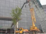 广州小型吊车出租 广州3吨叉车出租 广州12米平板车出租