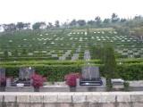 鄭州新鄉市中原文化藝術陵園,單穴雙穴墓地 綠色生態花園式公墓